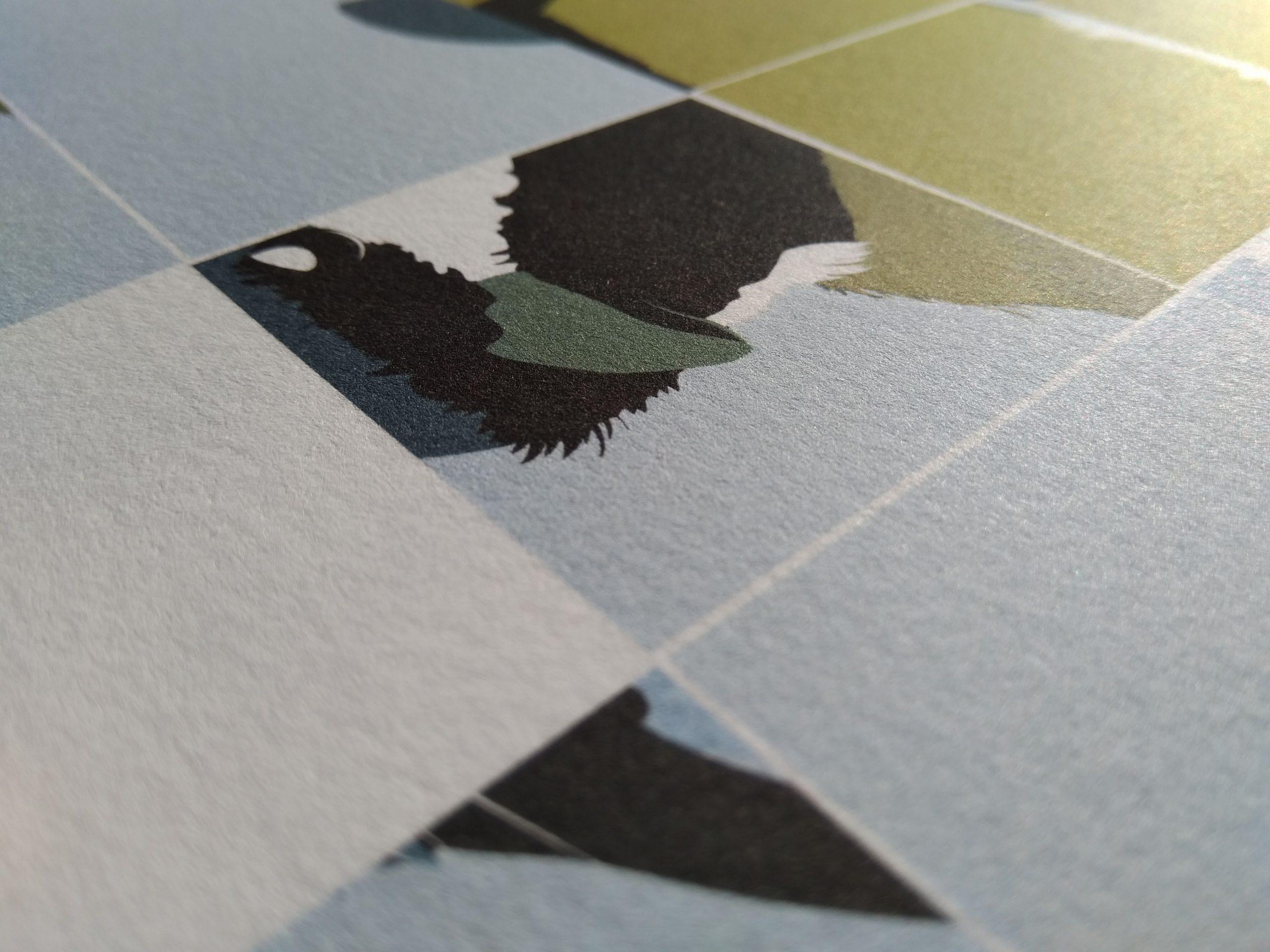 Koolmees 80x80cm, fine-art papier, kleurechte inkt, gelimiteerde druk.